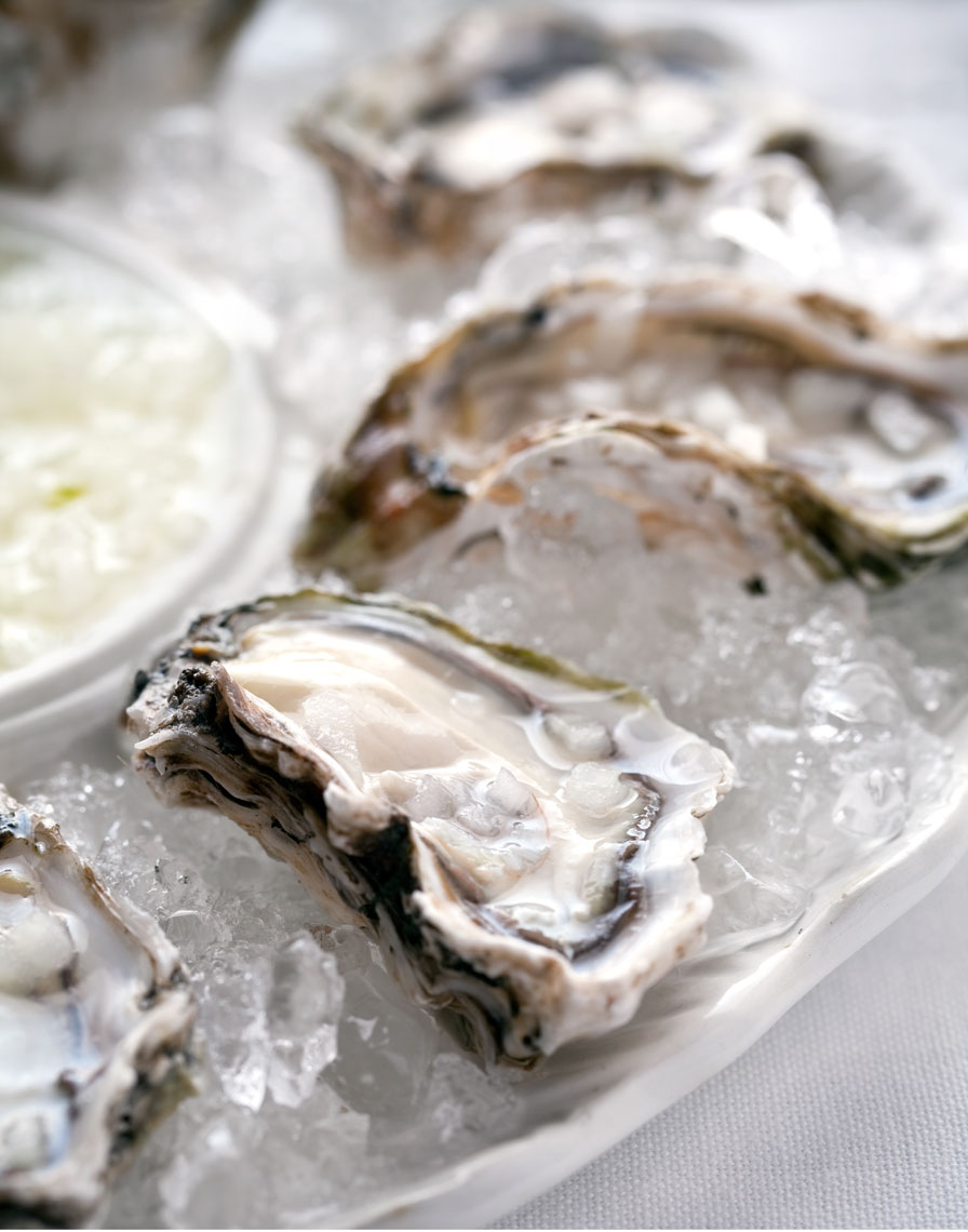 Tondro_Food_oysters